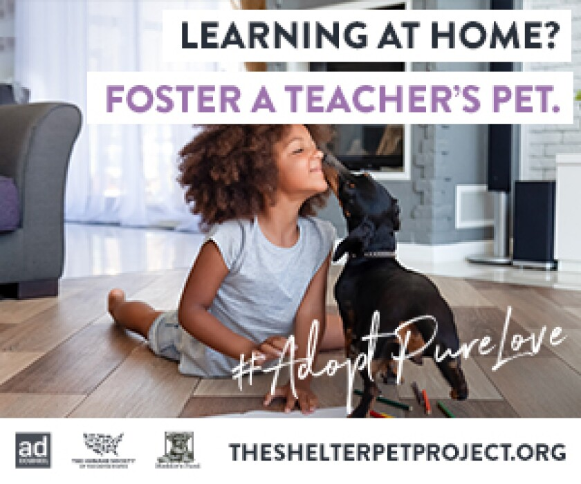 Fostering - Learning