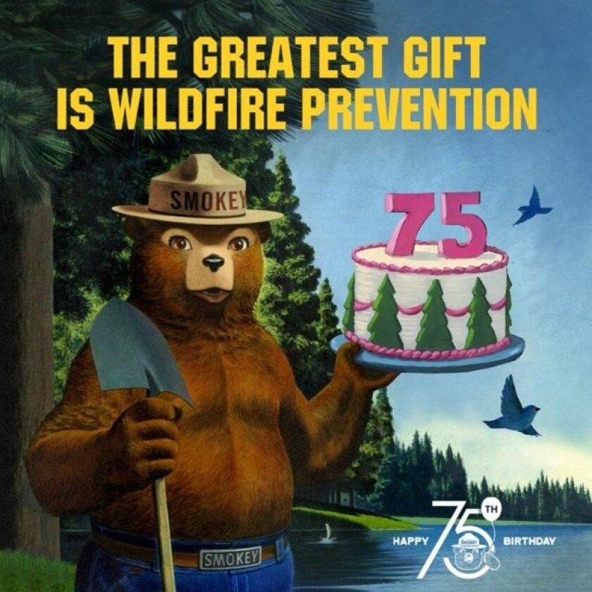 smokey the bear history