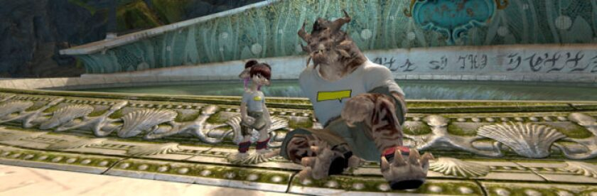 Video game partnership Guild Wars 2